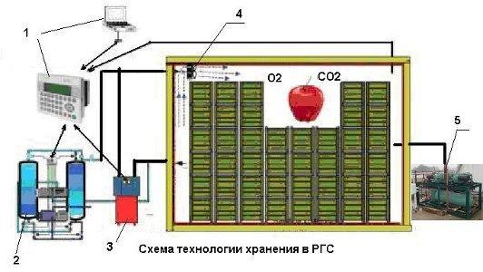 Хранение винограда в (РГС/ULO ) регулируемой атмосфере