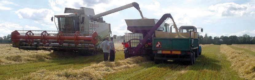 Плющение зерна